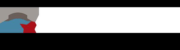 Hjemmeside Akademiet